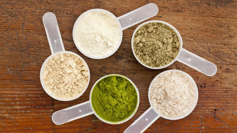 selection of non dairy protein powders